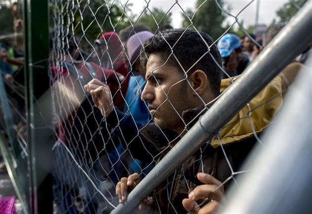 Výsledek obrázku pro uprchlíci kriminalita