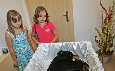 Krematorium zvířat olomouc