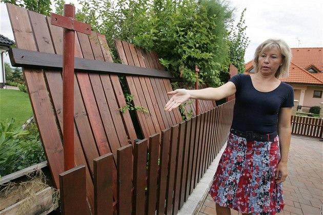 Stavba plotu mezi sousedy