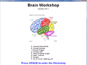Brain Workshop