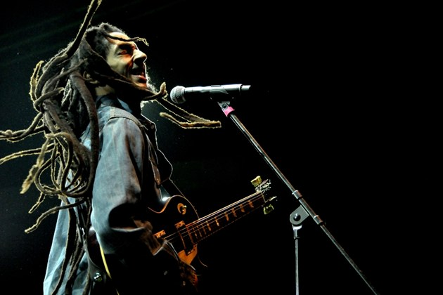 Open Air Music Festival Trutnov 2013 (Julian Marley)