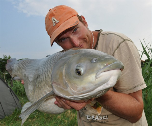 Amur se stal populární rybou lovenou sportovními rybáøi.