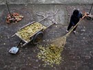 A woman sweeps leaves in a yard at the Democracy Elementary and Middle School...