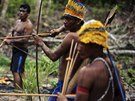 Munduruku Indian warriors prepare themselves as they approach a wildcat gold...