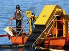 8 In this April 21, 1989, file photo, a skimmer is used for shoreline oil in...