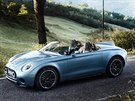 Roadster Mini Superleggera Vision