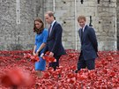 Vévodkyně z Cambridge Kate, princ William a princ Harry ve vysušeném příkopu...