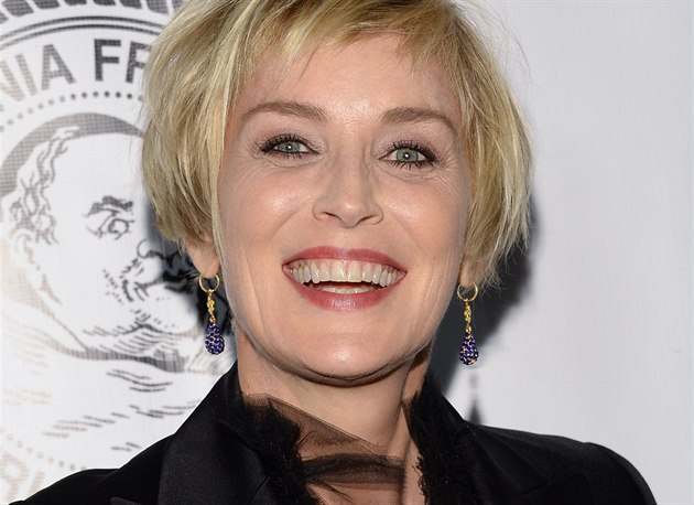 Sharon Stone (New York, 7. �íjna 2014)
