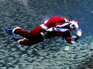 Dressed in a Santa Claus outfit, a diver swims with sardines to celebrate for...
