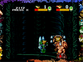 Battletoads Arcade (Rare Replay)