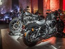 Harley-Davidson Iron a Forty-Eight pro rok 2016