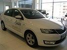 Projekt Autocentrum Handy nově nabízí náhradní vůz pro handicapované