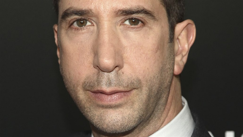David Schwimmer (New York, 23. května 2016)