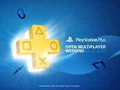 Free Online Multiplayer Weekend