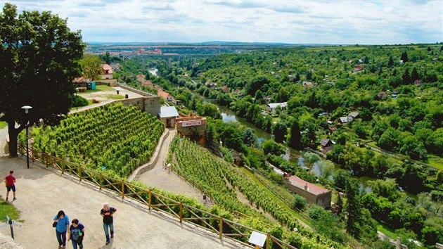 Rajské vinice se nacházejí přímo vcentru města, uprostřed fotky vidíte degustační altán.