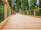 Návštěvníci stezky se mohou nejen procházet v korunách stromů či pod zemí, ale...