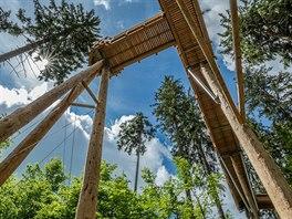Chodník ve výšce 24 metrů nad zemí nabídne jedinečné výhledy do korun stromů.