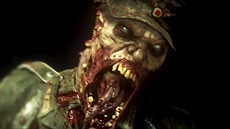 Call of Duty: WW2 - Zombie Mode
