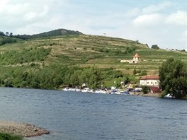 Kombinace zdejšího klimatu, přítomnosti Labe a úrodné půdy dávají vinicím v...