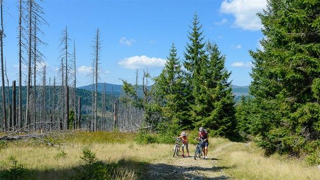 Poslední kilometr pod vrcholem Poledníku je nejnáročnější úsek na trase.