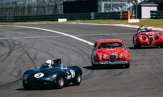 Jaguar D-Type v akci