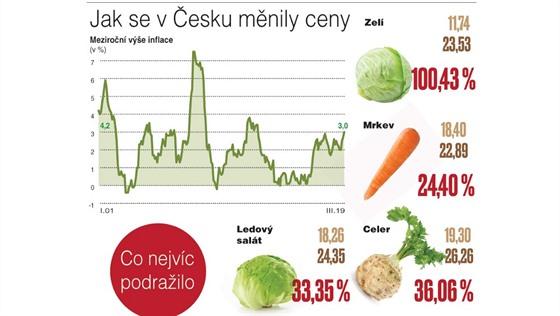 Jak se v Česku měnily ceny.