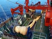 Tralová síť pro odlov hlubokomořskıch ryb na vızkumné lodi Walther Herwig III