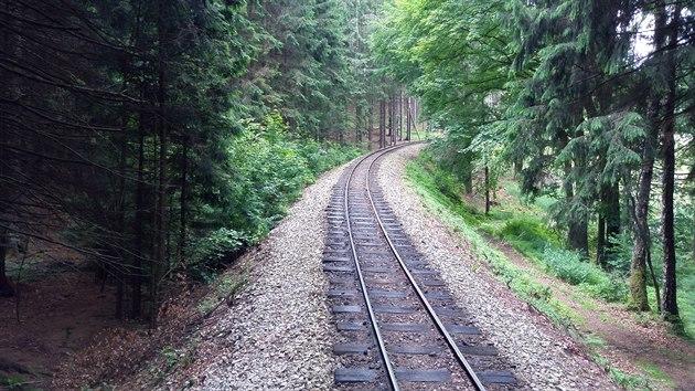 Úzkokolejná trať 229 z Jindřichova Hradce do Nové Bystřice za zastávkou Kaproun