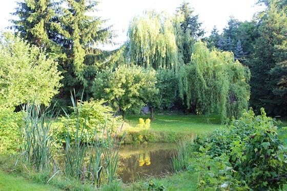 Jezírko v zahradě založili rodiče před třiceti lety. (Statek v údolí na...