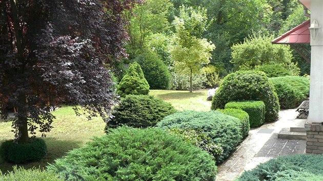 Souvislá řada keřů a cestička s pochozí dlažbou odděluje dům od zeleně.