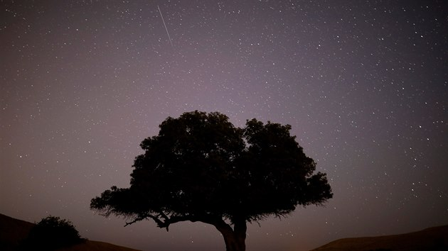 Jeden z meteorů z roje Perseidy u městečka Micpe Ramon v Izraeli.