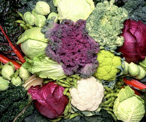Existovaly obavy, že když pacient bere warfarin a zároveň listovou zeleninu,...