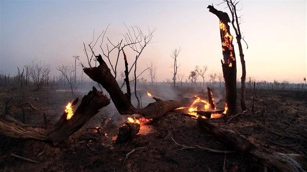 Požár amazonského pralesa v Bolívii. (30. srpna 2019)