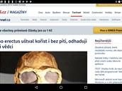 Naked Browser je extrémně zjednodušenı webovı prohlížeč