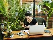 Hlavním důvodem, proč se na pracovišti obklopit zelenımi rostlinami, je jejich...