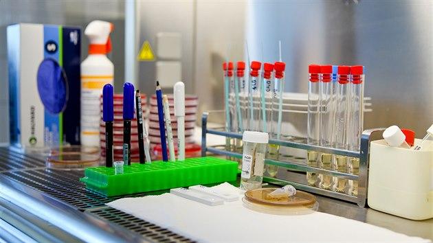 V Ústavu mikrobiologie olomoucké fakultní nemocnice se každı den testují vzorky na koronavirus.