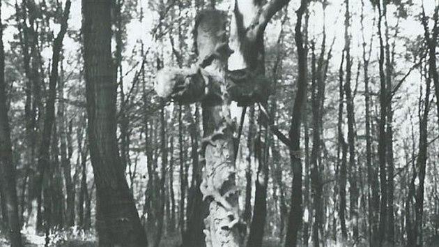 Pískovcovı kříž s přírodními motivy vznikl na počest prince Alaina Rohana, jenž poblíž Košťan nešťastně zemřel ve věku 27 let. Při honu u knížete Morice Lobkovice 28. září 1857 nepřežil pád z koně.