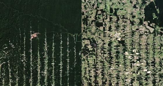 Možná jeden z nesmutnějších satelitních snímků zachycuje odlesňování...