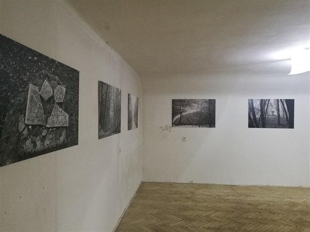 Výstava v bývalých drážních bytech má mimo jiné také upoutat pozornost na kritický stav budovy.