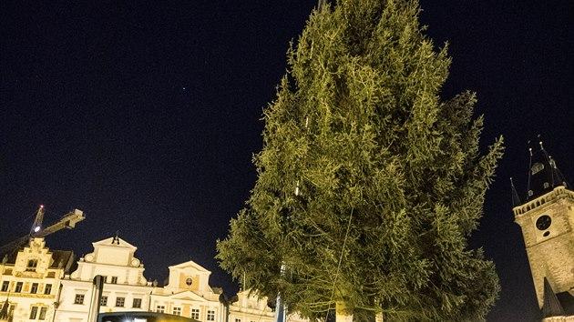 Na pražském Staroměstském náměstí stojí vánoční smrk. Pochází z Kamenného Přívozu, v noci ho do Prahy přivezl americkı tahač. (24. listopadu 2020)