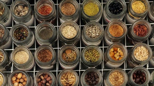 Semínka z Millenium Seed Bank