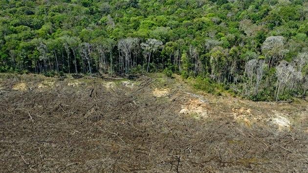 Destrukce pralesa zasáhla plochu o rozloze Středočeského kraje. (7. srpna 2020)