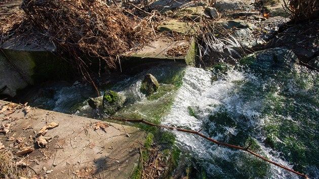 Ve středu 2. prosince se u vıpusti potrubí z areálu v Juřince objevila znečištěná voda a několik mrtvıch ryb.