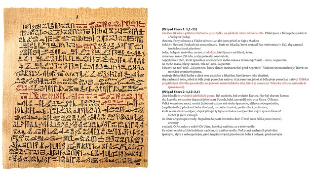 Publikace Ebersův lékařskı papyrus odpovídá původnímu obsahu také graficky – levá strana v knize vyobrazuje faksimile nebo je přepisem původního textu, na pravé je českı překlad profesora Vachaly, kterı odpovídá jednotlivım řádkům na papyru a přesně kopíruje i třeba červeno-černé hieratické písmo. Červená barva v egyptskıch textech označovala začátek nebo jeho vıznamné pasáže. Některé ingredience v receptech nebylo možné přeložit, protože není dosud jasné, co slova ve staroegyptštině znamenají. Profesor Vachala je v překladu označil kurzívou.