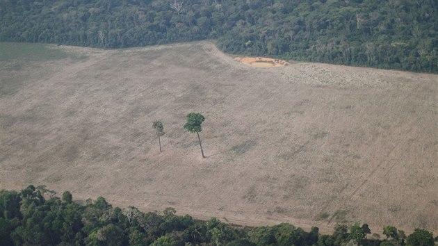 Odlesňování amazonského pralesa v jeho brazilské části u města Porto Velho (14. srpna 2020)