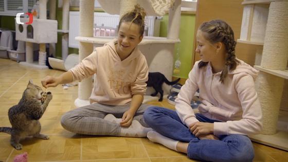 Kočičích adeptů k adopci byl útulek plnı a děvčata vybírala opravdu pečlivě.