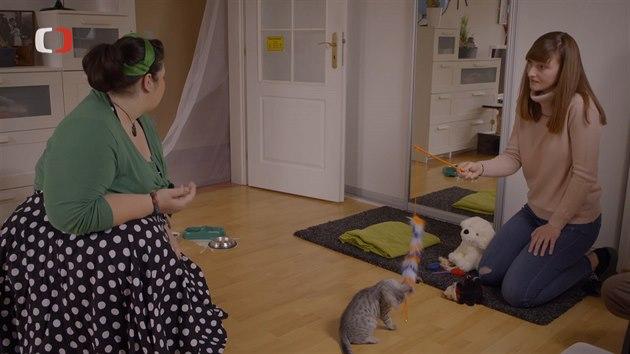 Nečeřalová je přesvědčená, že koťátko je jako společník pro hendikepovanou kočku dobrou volbou.