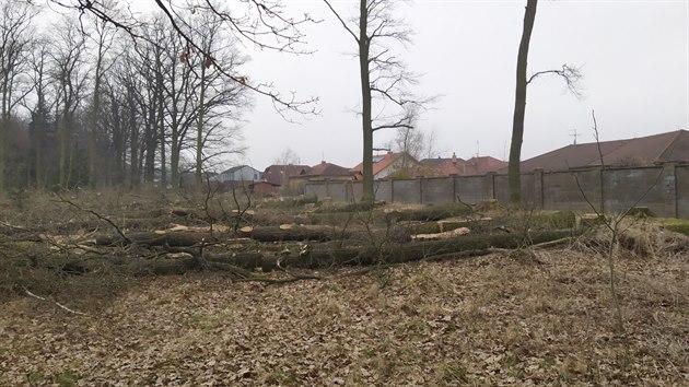 Obyvatele českobudějovické Zavadilky štvou vykácené duby. Vedlejší pěšina je oblíbená díky procházkám.