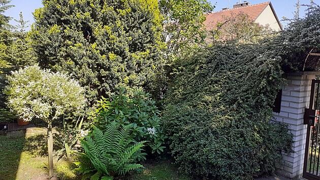 Díky vzrostlım keřům i pečlivě udržovanım tújím poskytuje zahrada dokonalé...