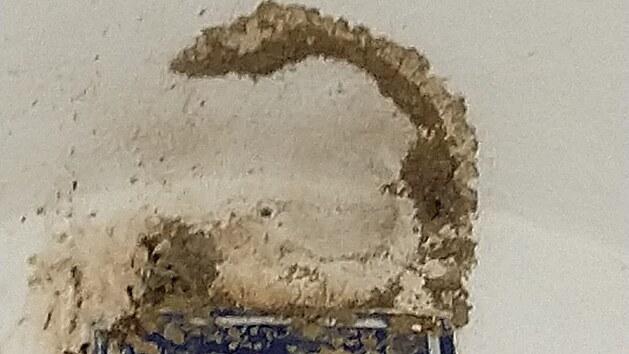 Kde ještě na počátku června byla hnízda jiřiček, zbyly na stropě a zdech telčského podloubí už jen hnědé fleky. Hnízda někdo strhnul.